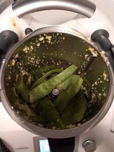 triturando las hojas de aloe vera